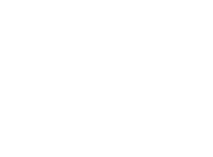 The Social Element USA